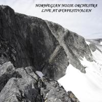 Norwegian Noise Orchestra - Live At Øyafestivalen